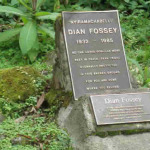 Fossey grave hike